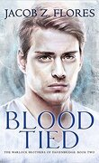 The Warlock Brothers of Havenbridge, Tome 2 : Blood Tied