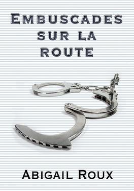 Couverture du livre : La Série Ty et Zane, Tome 5 : Embuscades sur la route