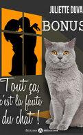 Tout ça c'est la faute du chat - Bonus - Une nouvelle page