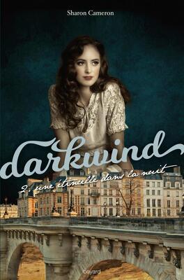 Couverture du livre : Darkwind, Tome 2 : Une étincelle dans la nuit