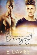 The Riley Brothers, Tome 1 : Buzz