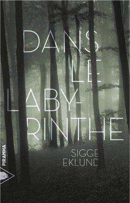 Couverture du livre : Dans le labyrinthe