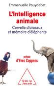 L'intelligence animale Cervelle d'oiseaux et mémoire d'éléphants