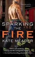 Hot in Chicago, Tome 3 : Sparking the Fire
