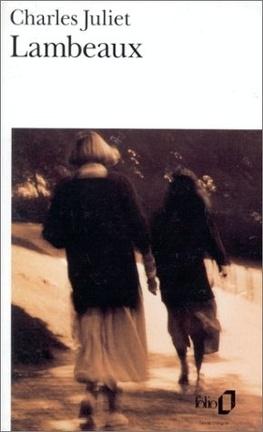 Couverture du livre : Lambeaux