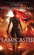 Shattered Realms, Tome 1 : Flamecaster