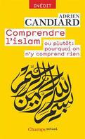 Comprendre l'islam, où plutôt : pourquoi on n'y comprend rien