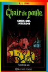 Chair de poule, tome 17 : Sous-sol interdit