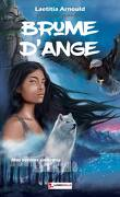 Brume d'Ange, Tome 1 : Nos totems ennemis