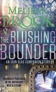 The Iron Seas, Tome 0.4 : The Blushing Bounder