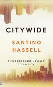 Les Quartiers de New-York, tome 6 : Citywide