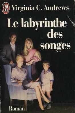 Couverture du livre : La Saga de Heaven, tome 5 : Le labyrinthe des songes