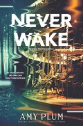 Dreamfall, Tome 2 : Neverwake