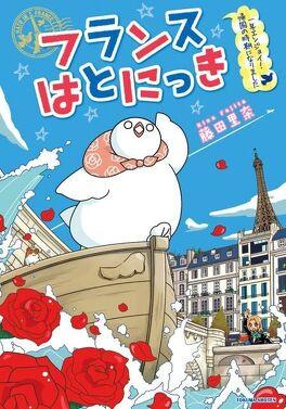Couverture du livre : Un pigeon à Paris, Tome 3