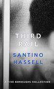 Les quartiers de New York, tome 5.5 : Third rail
