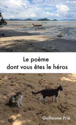 Couverture du livre : Le poème dont vous êtes le héros